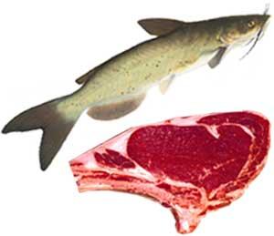Мясо, рыба